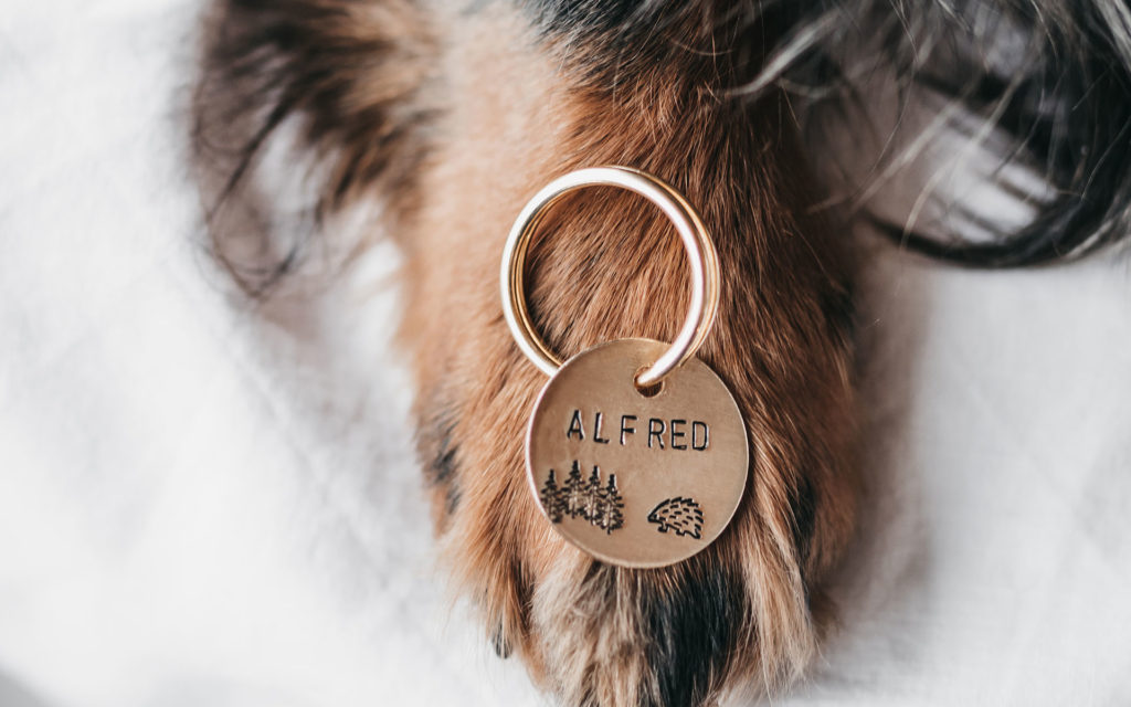 pet-tags-alfred